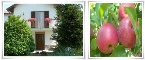 casa-nel-verde-mele