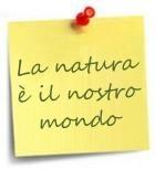 La natura è il nostro mondo